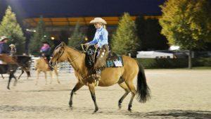 Q19 in Aachen: Europas größtes American Quarter Horse Event